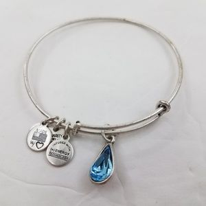 Alex And Ani Bracelet Living Water Charity By Desi